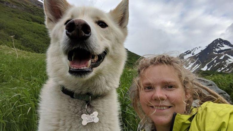 Caiu Numa Ravina E Foi Salva Por Um Cão Que Apareceu Do Nada