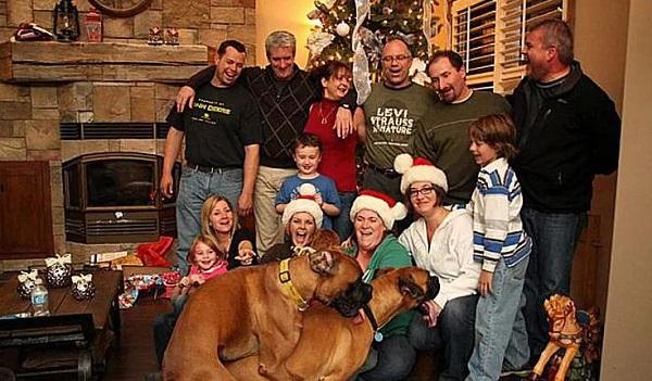 As Mais Estranhas e Hilárias Fotos de Natal11